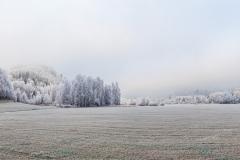 Ingweiler Tal